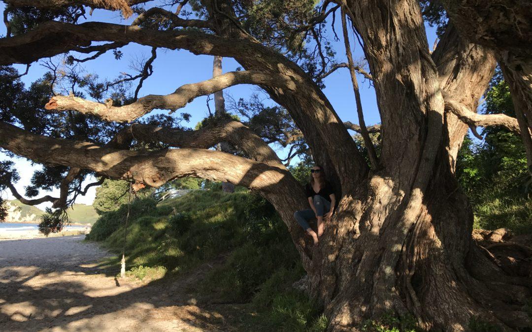 Travel the World | Hot Water Beach & Waitomo, NZ