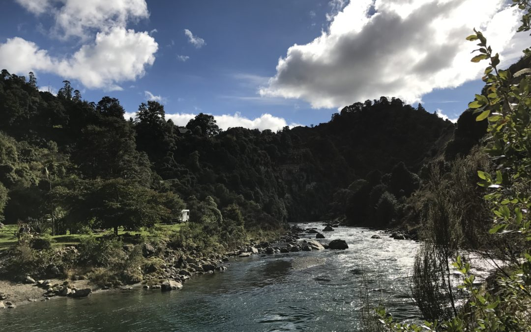 Working Nine to Five? | River Valley, NZ
